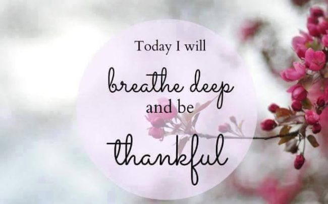 180159-today-i-will-be-thankful